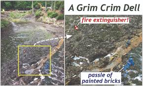 When Things Turn Grim at Crim Dell - The William & Mary Blogs