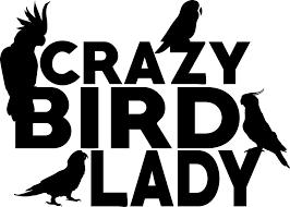 Crazy Bird Lady Decal Window Bumper Sticker Cockatoo Cockatiel Parrot Conure Car Stickers Length 14 5cm Car Stickers Aliexpress