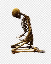 جمجمة تصوير جمجمة و عظام جمجمة و عظمتين متقاطعتين جمجمة الشعار