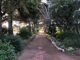 Ada Ryan Gardens light up | Whyalla City Council