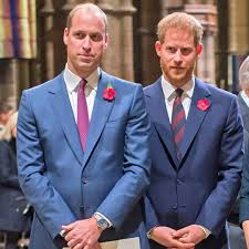 Prince William's Frustrations With Prince Harry Revealed in New Book - E!  Online