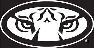 24 White Auburn Tiger Eyes Oval Vinyl Decal Wesellspirit Com