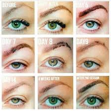 microblading what to expect smart