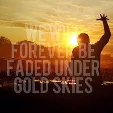 martin garrix gold skies edm quotes edm lyrics edm music