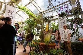 tucson botanical gardens visit tucson