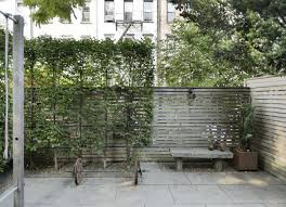 Garden Hacks 10 Ideas For Privacy Screens Gardenista