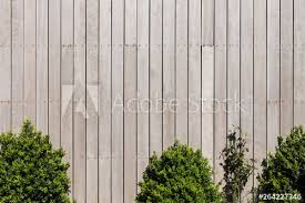 Oak Faded Wooden Battens Fastened With Screws Wooden Fence And Bushes Background Buy This Stock Photo And Explore Similar Images At Adobe Stock Adobe Stock