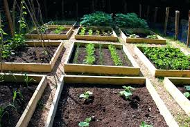 garden bed plans free airyflame info