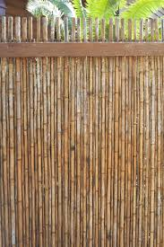 Free Image Of Outdoor Bamboo Fencing With Palm Fronds