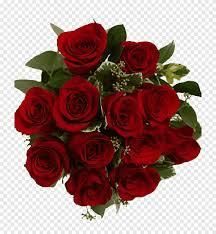 باقة من الزهور الوردية مقطوعة بالزهور عيد الحب نوروز الحب زهرة