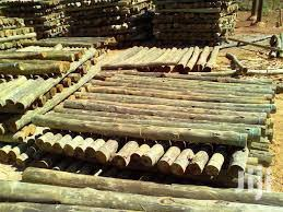 Archive Treated Poles And Fencing Service In Central Bunyore Building Trades Services Butiko C Jiji Co Ke In Central Bunyore Building Trades Services From Butiko C On Jiji Co Ke