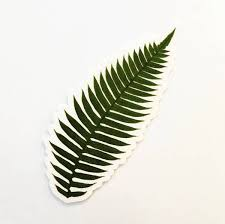 Stickers For Plant Lovers Antique Illustrations Fern Sticker Pergamo Paper Goods