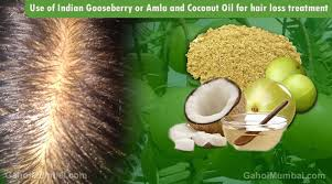 amla and coconut oil for hair loss