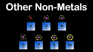 non metals periodic table other non
