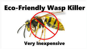 homemade wasp spray you