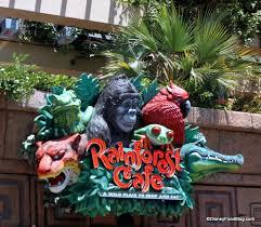 review rainforest cafe a la disney