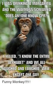 25 best memes about funny monkeys