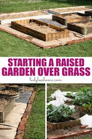 how to start a raised garden over grass