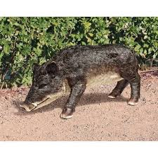 animal statues feral pig
