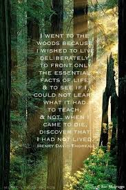 henry david thoreau walden in high school my dream was to live