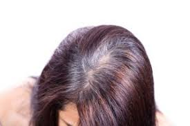 pure henna and indigo for gray hair