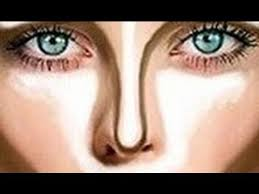 make your nose look smaller in seconds