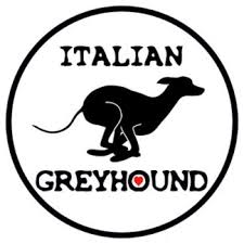 Italian Greyhound Car Decal Sighthoundgoodies