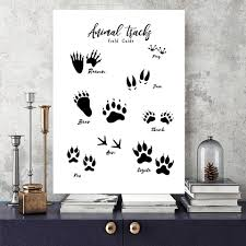 Animal Tracking Footprints Canvas Painting Black And White Wall Art Print Poster Bear Paw Wall Picture Rustic Nature Decor Home Painting Calligraphy Aliexpress