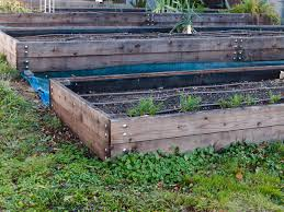raised garden beds if you re and lazy