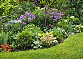 how to create a herbaceous border on a