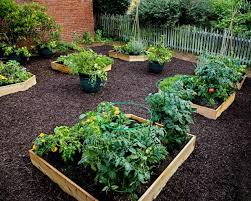 how to fill your raised garden bed