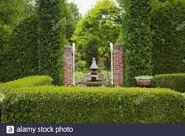 Buxus Sempervirens Hedge High Resolution Stock Photography And Images Alamy