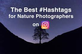 the best hashtags for nature photography on instagram nature ttl