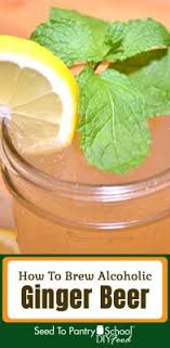 how to brew alcoholic ginger beer the