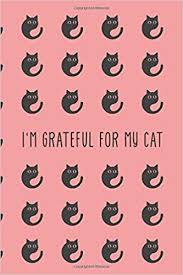 i m grateful for my cat evening gratitude journal tips