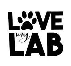 Custom Lab Paw Vinyl Decal Labrador Dog Bumper Sticker For Laptops Or Cars Window Transfer Wickedgoodz