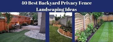 40 best backyard privacy fence