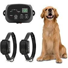 Amazon Com Ttpet Electric Dog Fence In Ground Aboveground Pet Containment System Ip66 Waterproof Rechargeable Collar Shock Tone Correction For 2 Dogs Ttpet Pet Supplies