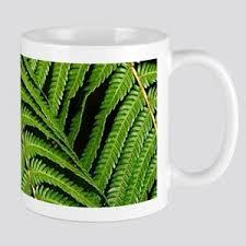 Fern Gifts Cafepress