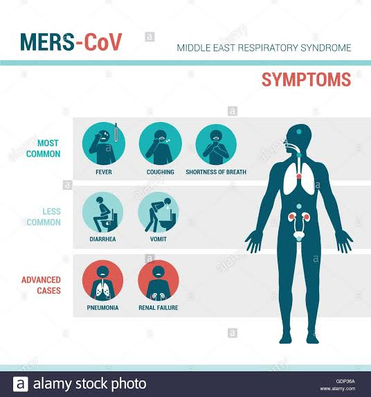 Image result for coronavirus symptoms in human""