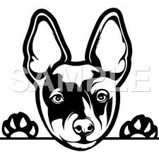 Rat Terrier Decal Sticker Car Truck Window Vinyl Choice Of Any Color Ebay