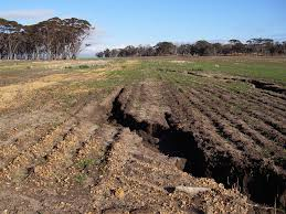 Water Erosion In The Agricultural Region Of Western Australia Agriculture And Food