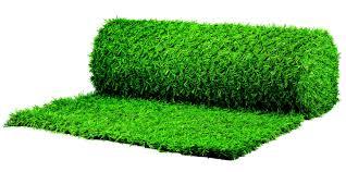 Garden Border Fence Ideas Integral Grass