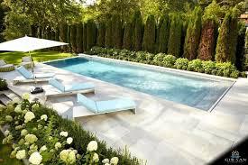 Inground Pool Backyard Designs Ideas Backyard Mastery In 2020 Backyard Pool Landscaping Small Pool Design Swimming Pools Backyard