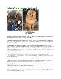 Https Www Nnva Gov Documentcenter View 6780 Helpful Ways To Make Your Dog Happy