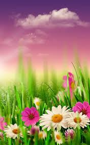 خلفيات الربيع