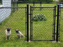 Traditional Fence Or Invisible Fence Malone Fence Company