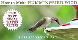 sugar water for hummingbirds