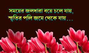 bengali quote alds web