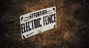 Electric Slug Fence Does It Work What Parts Are Needed Diy Tips